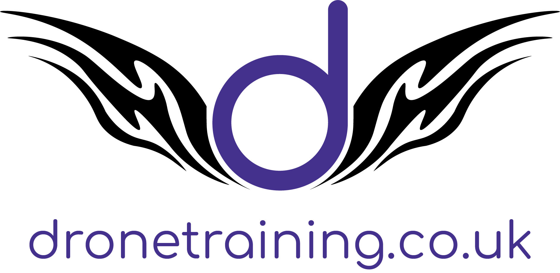 Logo of Drone Training Ltd
